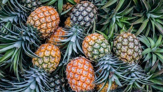 Pineapple E1587972835625